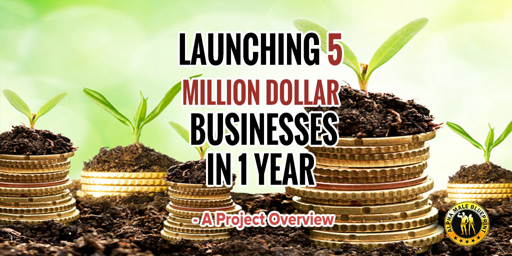 launching-5-million-dollar-businesses-in-1-year---a-project-overview