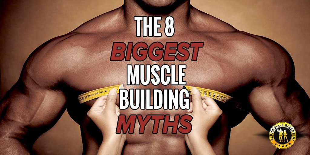 The 8 biggest muscle building myths malvernweather Images